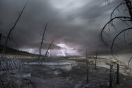 Bare trees at Yellowstone National Park against thunderstorm and lightning - CAVF57683