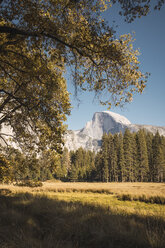 USA, California, Yosemite National Park, landscape with El Capitan in background - KKAF03060