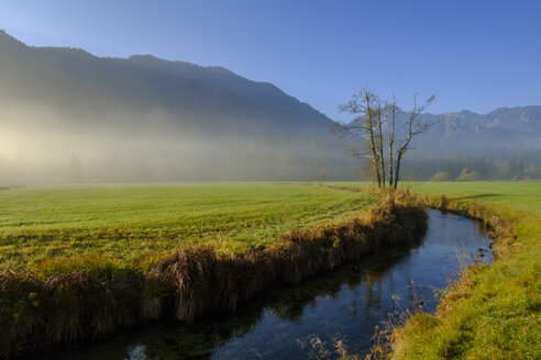 Germany, Upper Bavaria, Aurach near Fischbachau, morning fog - LBF02284