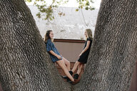 Playful sisters leaning on tree trunk at farm - CAVF57799