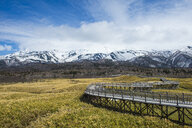 Hokkaido, Shiretoko National Park, boardwalk in the Shiretoko Goko Lakes area - RUNF00313