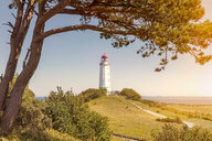 A lighthouse amidst the trees on a sunny day - INGF08737