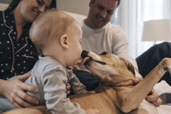 Parents looking at dog licking son while relaxing on bed at home - CAVF58592