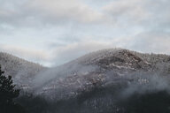 Low angle view of trees on mountain against cloudy sky during winter - CAVF58850