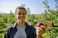 Portrait of smiling farmer holding apple while standing at orchard against clear sky - CAVF58943