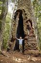Chile, Puren, Nahuelbuta National Park, boy standing inside an old Araucaria tree - SSCF00133