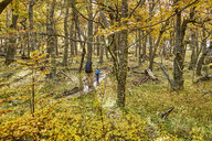 Argentina, Patagonia, El Chalten, mother and son hiking in autumnal forest - SSCF00313