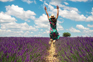 France, Provence, Valensole plateau, back view of woman jumping in the air among lavender fields in summer - GEMF02666