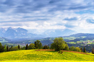 Scenic landscape of mountains - INGF10181