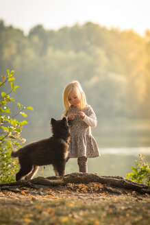 Full length shot of a girl playing with a dog - INGF10202