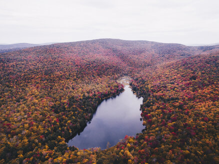 High angle scenic view of lake amidst forest against sky during autumn - CAVF60168