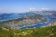 Montenegro, Bay of Kotor, near Kotor,  Peninsula Vrmac - SIEF08186