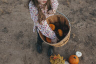 High angle view of girl holding basket with pumpkins and apples while standing on field during autumn - CAVF60338