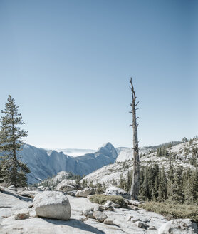 Scenic view of forest and mountains against clear sky at Yosemite National Park - CAVF60425