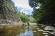 Rear view of family walking in river at forest - CAVF60428