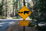 USA, California, Sequoia Natioal Park, Animal Crossing Sign, family of mum and baby bears - GEMF02691