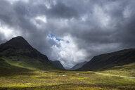 Great Britain, Scotland, Scottish Highlands, Glen Coe - ELF01993
