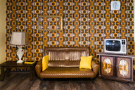 Interior of a vintage living room - GIOF05149