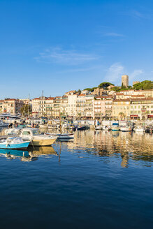 France, Provence-Alpes-Cote d'Azur, Cannes, Le Suquet, Old town, fishing harbour and boats - WDF04920