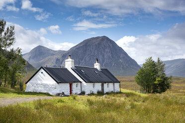 Großbritannien, Schottland, Highlands, Einsames Cottage im Glen Coe, dahinter der Berg Buachaille Etive Mor - ELF01994