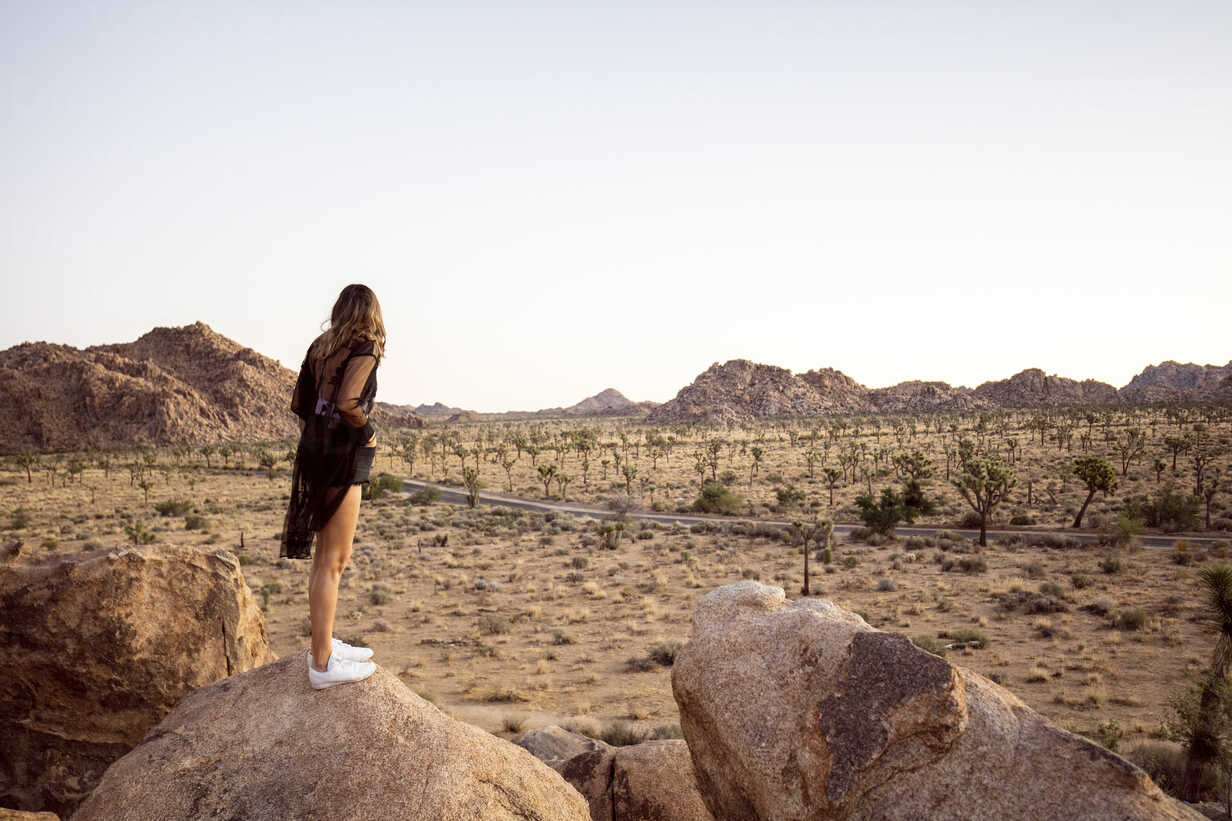 USA, California, Los Angeles, woman on rock overlooking landscape in Joshua Tree National Park - DAWF00843 - Daniel Waschnig Photography/Westend61