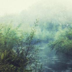Wupper river and fog - DWIF00958