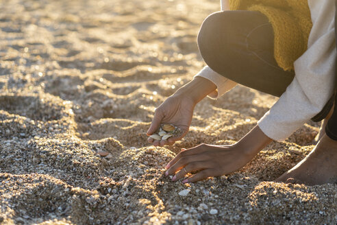 Woman collecting seashells on the beach - AFVF02144