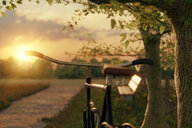 Close-up shot of a bicycle in a field during sunset - INGF10416