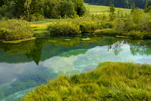 Slovenia, Gorenjska, near Ratece, Sava Dolinka, source, Lake Zelenci - LBF02311