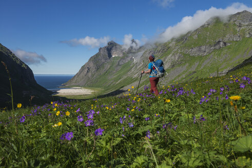 Female hiker hiking towards Horseid beach, Moskenesoya, Lofoten Islands, Norway - AURF07914