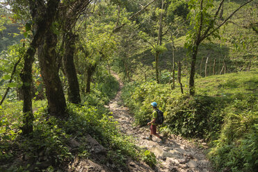 Hiking inLosLimones,Xicotepec, Puebla State, Mexico - AURF08040