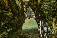 Montenegro, near Kolasin, Mrtvica Canyon, Gate Of The Wishes, Kapija Zelja, rock arch - SIEF08246