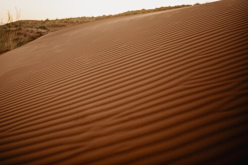 Namibia, Namib desert, Namib-Naukluft National Park, Sossusvlei, sunset at Elim Dune - LHPF00234