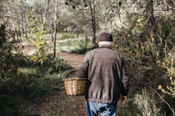 Senior man looking for mushrooms in the forest - JRFF02238