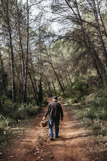 Senior man looking for mushrooms in the forest - JRFF02250
