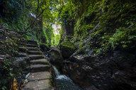 Indonesia, Bali, stairs in the sacred Monkey forest Ubud - RUNF00570
