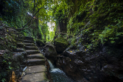 Indonesia, Bali, stairs in the sacred Monkey forest Ubud - RUNF00570