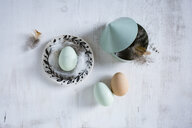 Still life with eggs and feathers - OJF00321