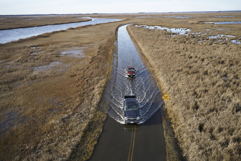 USA, Maryland, Cambridge, High tide flooding from rising sea levels at Blackwater National Wildlife Refuge - BCDF00372