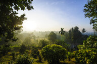 Indonesia, Java, early morning view from the Borobudur Temple Complex on the scenery around - RUNF00604