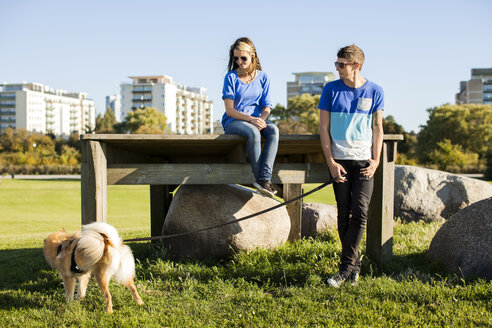 Couple with dog at park in city on sunny day - ASTF00104