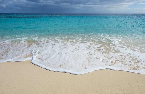Bermuda, Jobson bay, White sand beach - RUNF00666