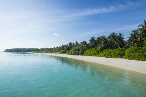 Maledives, Ari Atoll, Nalaguraidhoo, Sun Island, vegetation and empty beach - RUNF00724