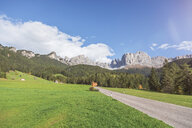 Italy, South Tyrol, Dolomites, Rosengarten group, country road in summer - MMAF00738