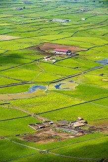 Portugal, Azores, Island of Terceira, Miradouro da Serra do Cume - RUNF00789