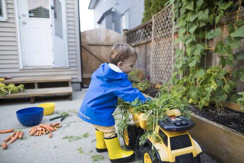 Boy playing in vegetable garden - AURF08145