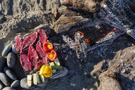 Food prepared for cooking over campfire on beach,Tofino, British Columbia, Canada - AURF08199