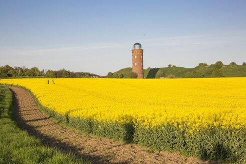 Germany, Ruegen, Cape Arkona, Positioning Tower, Peilturm and rape field - MAMF00264