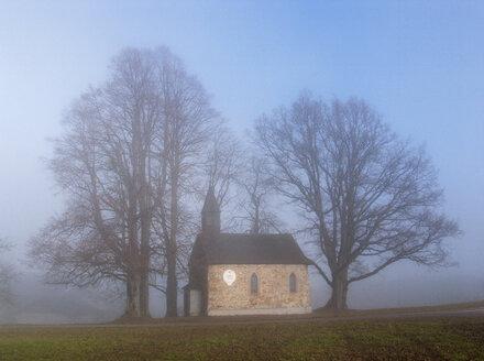Austria, Salzkammergut, Mondsee, Haslau, chapel in morning fog - WWF04695