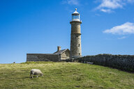 United Kingdom, England, Devon, Island of Lundy, Lighthouse - RUNF00824